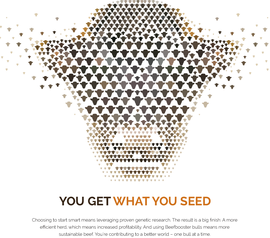 You get what you seed